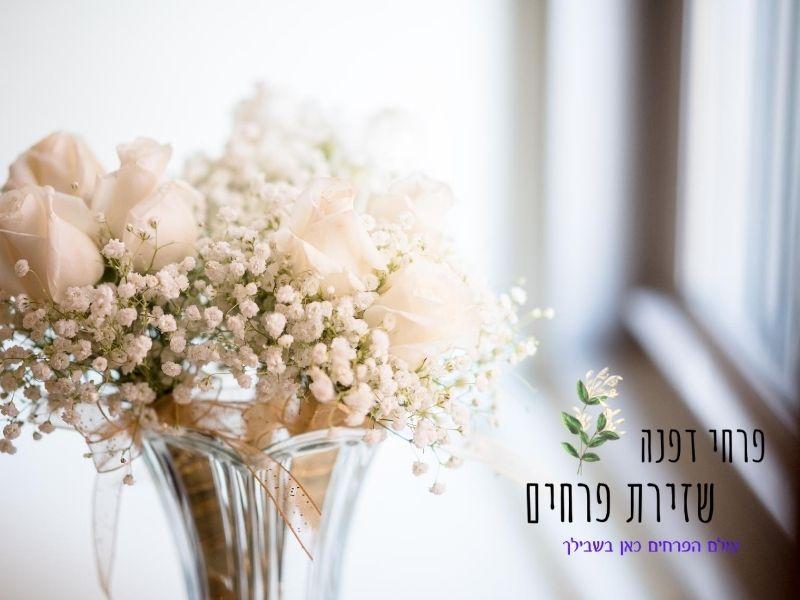 סייפן פרח